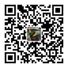 1616481842280870.jpeg